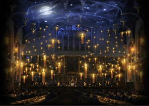 Hogwarts Candles Church Lunch Hall Custom Backdrop Photo
