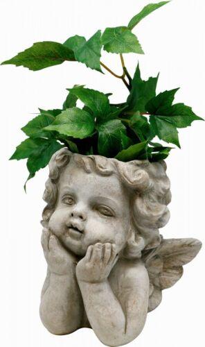 Pflanztopf Engel Zement 20 cm massiv Blumentopf Putte Kopf Shabby grau