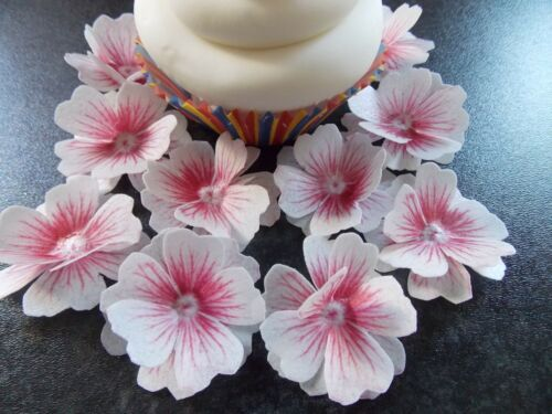 12 x 3D Edible Pink and White flowers wafer//rice paper cake//cupcake toppers