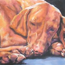 hungarian vizsla dog art portrait Canvas Print of Lashepard painting Lshep 8x8""