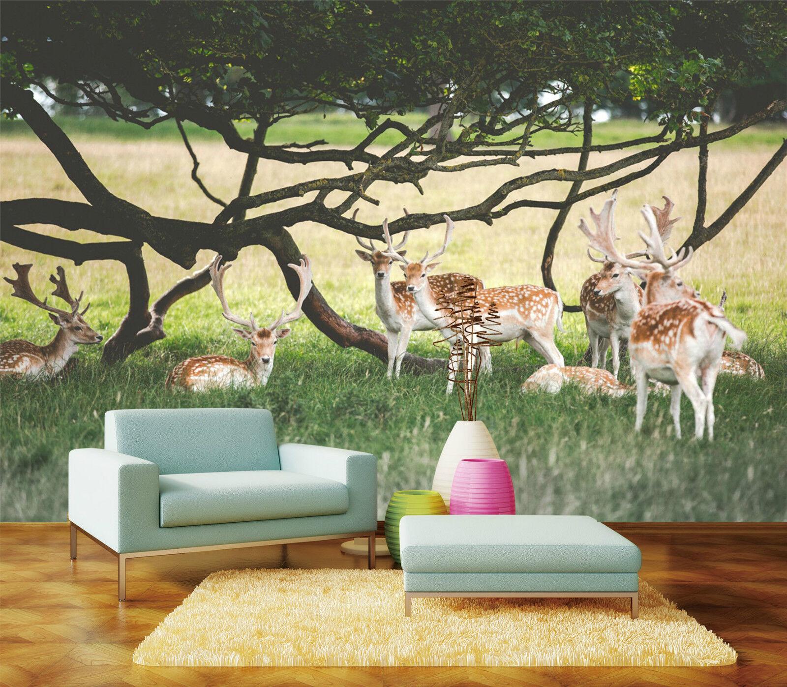 3D Cerf 005 Photo Papier Peint en Autocollant Murale Plafond Chambre Art