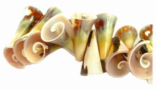 1 Cône lame escargot trompettes perles ~ 22-26 mm Coquillage perles nature perles muai