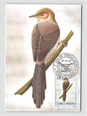 Motive S.tome Mk 1983 VÖgel Sao-tome-prinie Birds Carte Maximum Card Mc Cm M292 2019 New Fashion Style Online