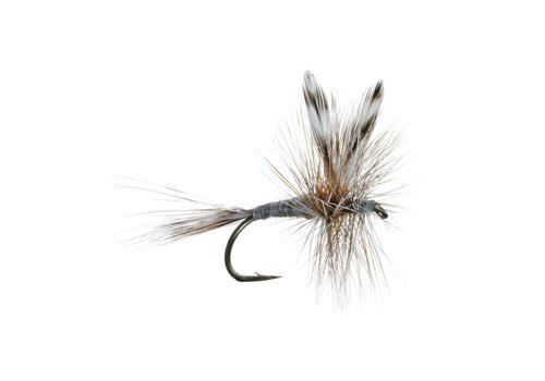 Umpqua Adams Dry Fly Selection Bulk Sale New
