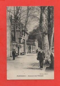 France-POMMARD-Avenue-des-Tilleuls-K733