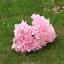 6-Koepfe-1-Bund-kuenstliche-Blumenstrauss-Hortensie-Party-Home-Hochzeit-Dekor Indexbild 20