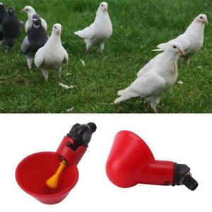 1/5/10 Pcs Bowl Quail Hen Chicken Automatic Water Cups Plastic Poultry Drinker