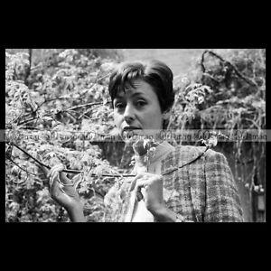 phs-005656-Photo-CATERINA-VALENTE-1966-Star