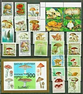 MUSHROOMS FUNGI Thematic STAMP Collection MINT USED Re:TT772
