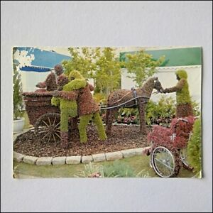 The-English-Riviera-At-The-Chelsea-Flower-Show-1995-Large-Postcard-P405