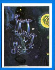 ANIMALI PREISTORICI - Panini 1975 - Figurina-Sticker n. 22 -New