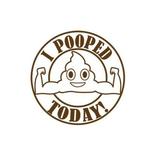 I POOPED TODAY Vinyl Decal Car Window Wall Bumper Funny Stick Figure JDM ILLEST