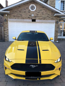 2018 Ford Mustang Coupe 6 Speed Manual Low KM +Extended Warranty