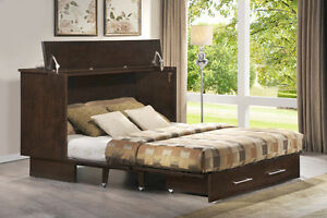 Arason Enterprises Creden Zzz Queen Studio Ash Cabinet Bed