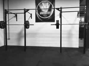 Monster Power Rack Wall Mounted Amp Squat Rig Pull Up