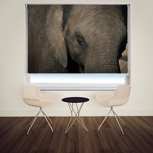 Digital-Print-Photo-Roller-Blind-The-Elelphant-close-up-Animal-blackout-blind