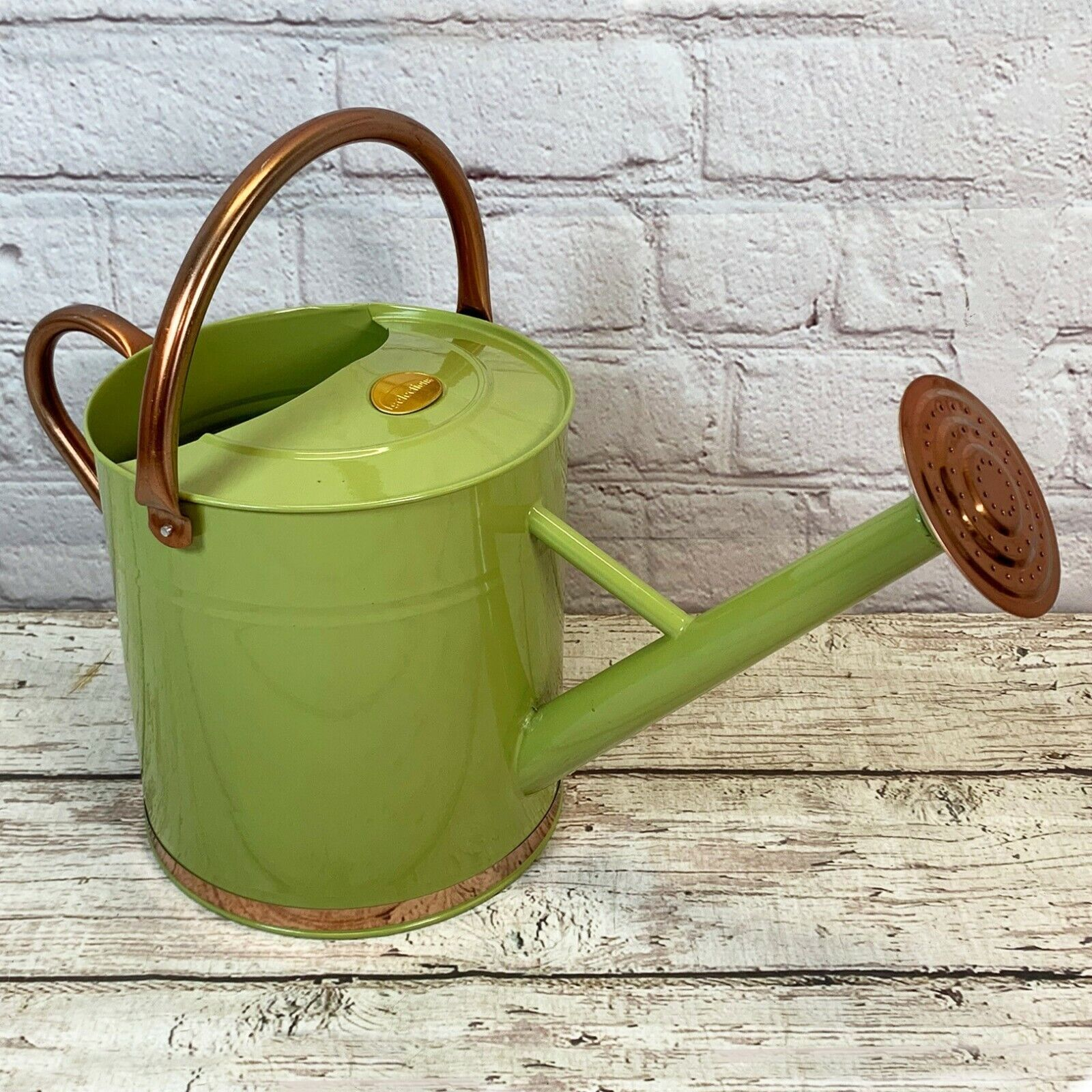 9 Litre Sage Green & Copper Metal Watering Can with Rose by Selections