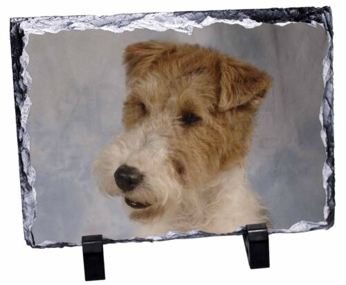 Fox Terrier Dog Photo Slate Christmas Gift Ornament, ADWHT1SL