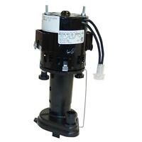 Scotsman - 12-2586-04 - Pump/motor Assembly - 115 Volt 12258604