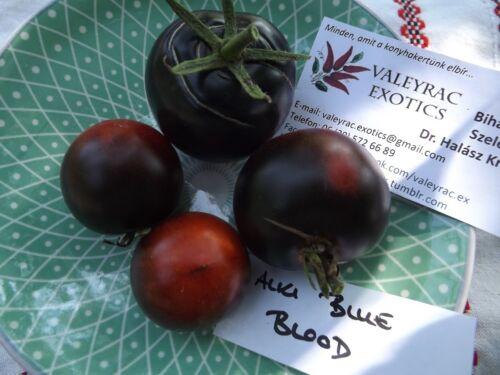 Gemüsesamen Saatgut Seeds Alki Blue Blood Tomate Tomato 5+ Samen