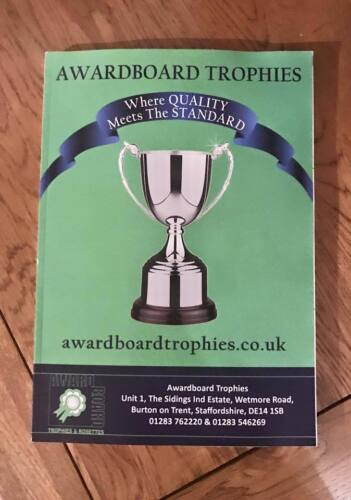 POOL OR SNOOKER TROPHY SOLID RESIN AWARD 20cm HIGH FREE ENGRAVING RF4153A B2