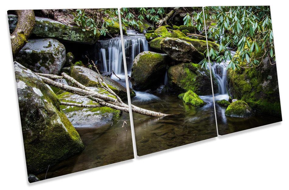 River Forest Stream art. a muro verde Triplo stampa foto foto foto 6ff403