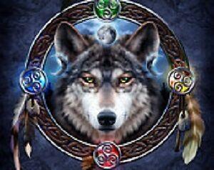 meghans-stormwolfsenchantments