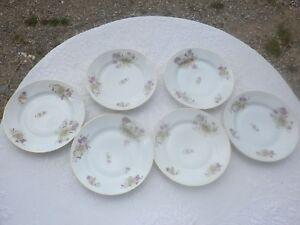 6-Assiettes-plates-anciennes-en-porcelaine-charmant-decor-floral-19-eme