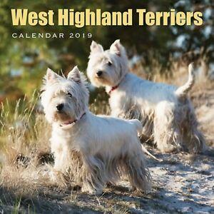 Scotland-West-Highland-Terriers-Calendar-2019-new