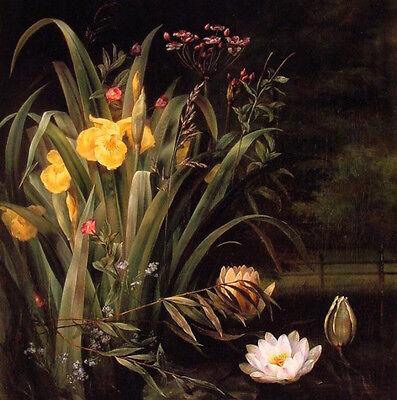 Oil painting Hermania Sigvardine Neergaard - Beautiful water flowers landscape