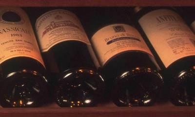 Italian Red Wines Top Picks