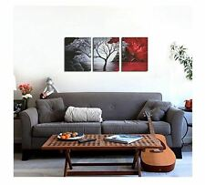 Paintings For Wall On Canvas Artwork Art Set Of 3 Living Room Black White Red
