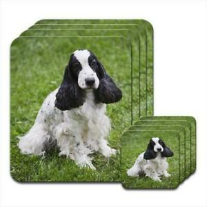 Cocker-Spaniel-Sitting-Set-of-4-Placemats-amp-Coasters