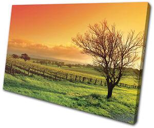 Landscapes Field SINGLE CANVAS WALL ART Picture Print VA