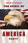 The Spirit of America Party by Tom O'Donnell (Paperback, 2006)