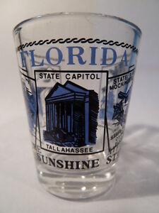 FLORIDA-SCENERY-BLUE-SHOT-GLASS-SHOTGLASS