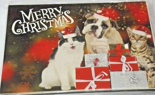 Animaux thème Noël rêves gamme de cartes. Lot de 8 cartes de Noël
