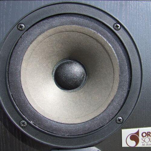 Sickenerneuerung Lautsprecherreparatur Audax PR 17 und Untermodelle Flachsicke