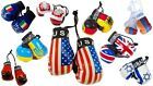 International Mini Boxing Gloves Country Flags Home Office Car Hanger Sport Gift