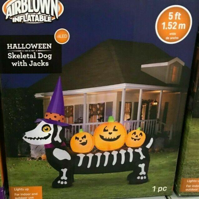 Dachshund Halloween Decorations.5 Ft Cat Dachshund Weiner Halloweiner Dog Halloween Inflatable Decor Outdoor For Sale Online Ebay