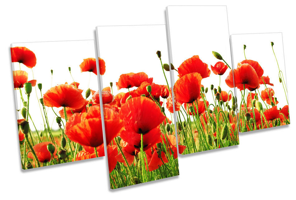 rot Poppies Flowers CANVAS Wand Kunst MULTI  Box Framed