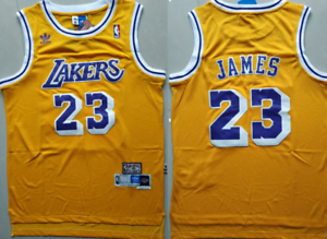 NWT Lebron James #23 Los Angeles Lakers Classic Stitched ...