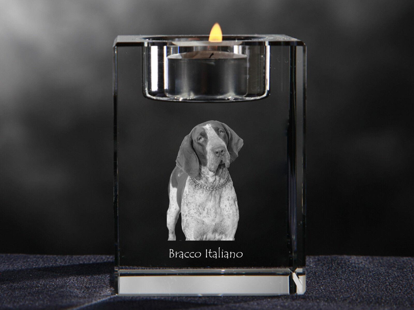 Bracco Italiano, Kristallleuchter mit Hund, Souvenir, Crystal Animals CA