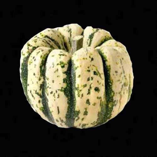 SWEET SQUASH 20 SEEDS VEGETABLE DELICIOUS PUMPKIN TASTY HEIRLOOM NON-GMO USA