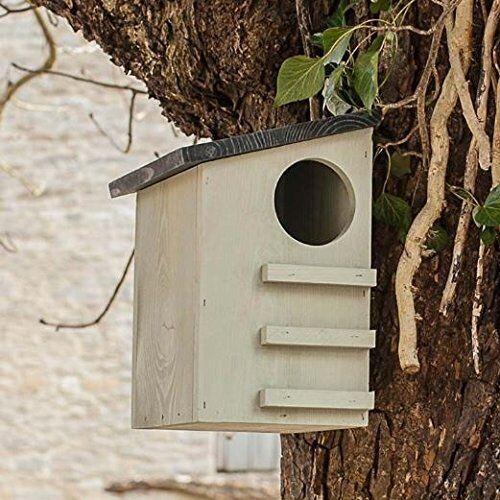 Écureuil House Boîte en bois de pin Outdoor Wildlife Refuge conservation Arbre