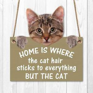 Image is loading CAT-HAIR-SIGN-Funny-Sign-Wooden-effect-Plaque-  sc 1 st  eBay & CAT HAIR SIGN Funny Sign Wooden effect Plaque Cat Gift Kitten /Cat ...