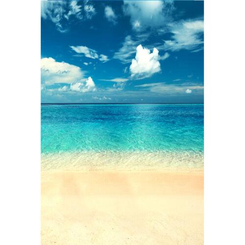 Tropical Sea Beach Background Cloudy Sunny Sky Cloudy Holiday Studio Backdrops