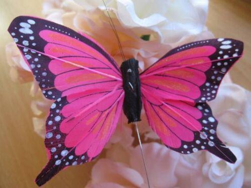 10.0 cm Envergadura Auténtico Cerise Pluma Fantail Butterfly