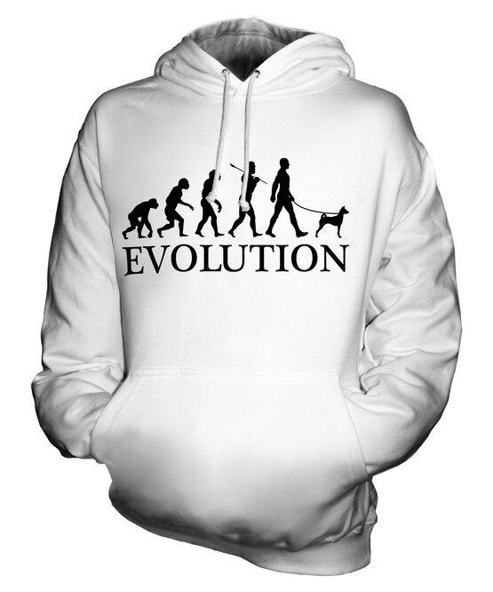 BASENJI EVOLUTION OF MAN UNISEX HOODIE MENS WOMENS LADIES DOG AFRICAN BUSH GIFT