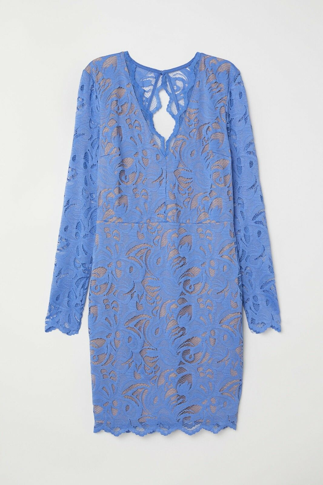 NWT - Elegant and Beautiful PERIWINKLE-bluee H&M Fitted LACE Dress, Size 12